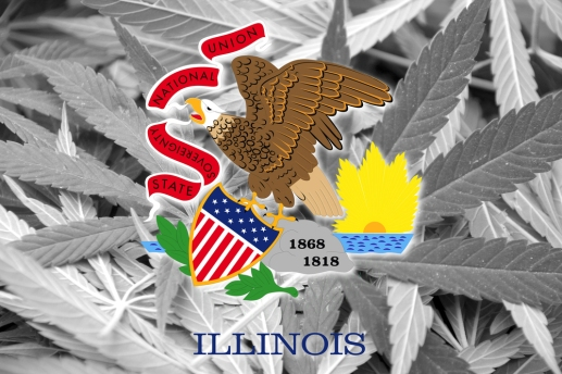 Flag of Illinois State, on cannabis background